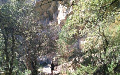 El Trails Denes de Morella s'ajorna al 5 de setembre