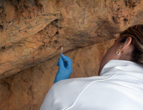 Jornada de portes obertes a la restauració de les pintures rupestres de la Cova del Roure
