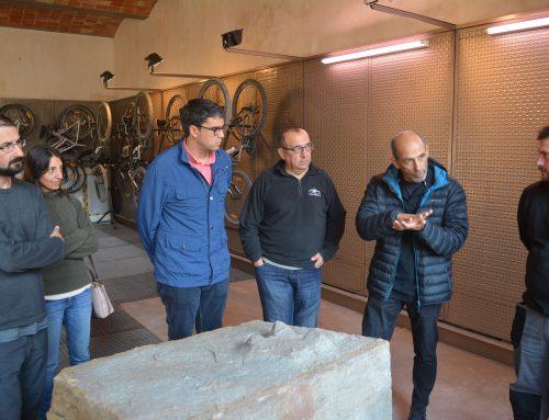 Nova troballa important de petjades de dinosaures a Morella