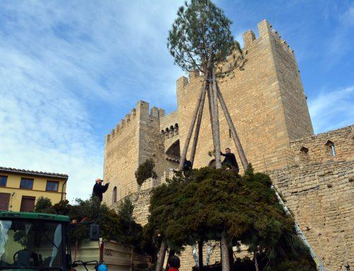 Morella, preparada para Sant Antoni
