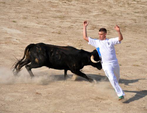 Concurs de retalladors i emboladors a Morella el dissabte 20 de juliol