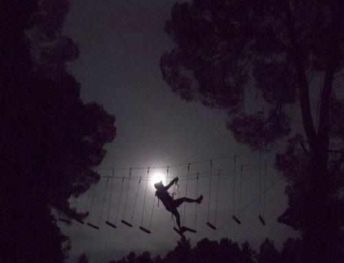 Els dies 16 i 17 de juliol s'estrena Saltapins a la llum de la lluna
