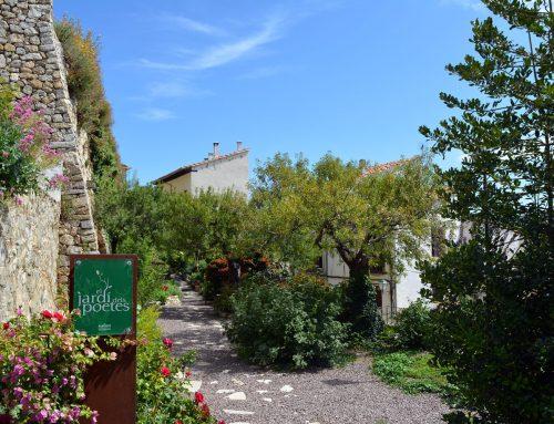 Morella renova les tres Flors d'Honor de Viles amb flor