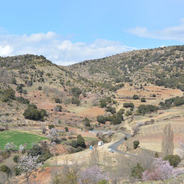 Obres carretera Xiva