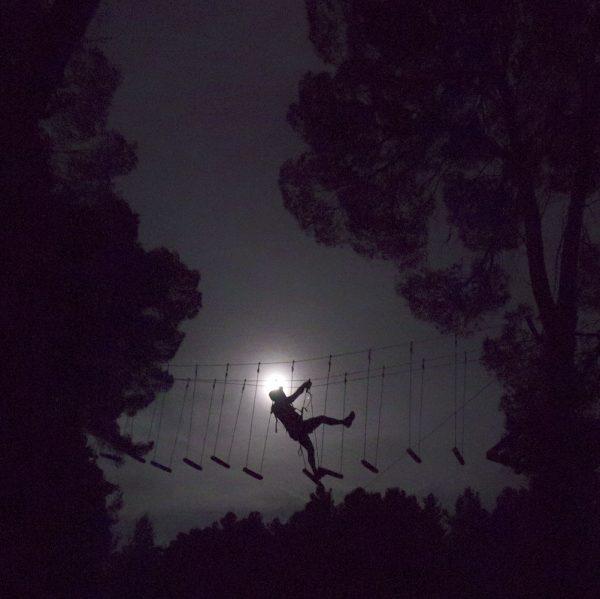 Saltapins a la llum de la lluna