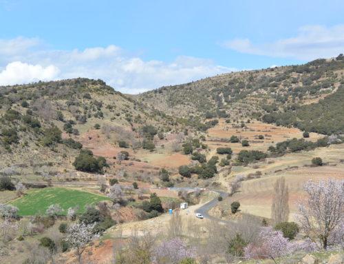 S'inicia l'asfaltament de l'últim tram de la carretera Xiva-Morella